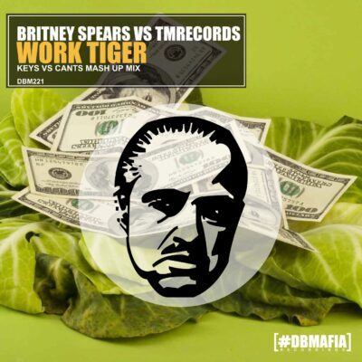 Britney spears vs tmrecords - work tiger | Dj Keys vs Cants mash up mix